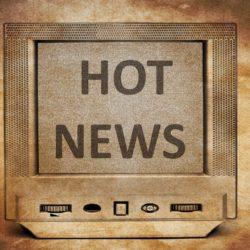 Hot News - Woodclef